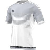 CAMISETA ADIDAS CAMPEON 15