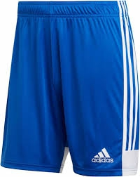 PANTALON CORTO ADIDAS TESTIGO 19 JUNIOR DP3686