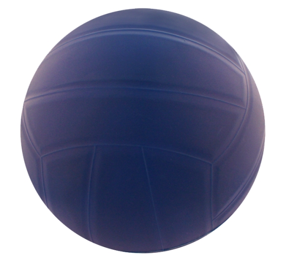 PELOTA POLIVALENTE LISA JIM SPORT 220MM 0003203
